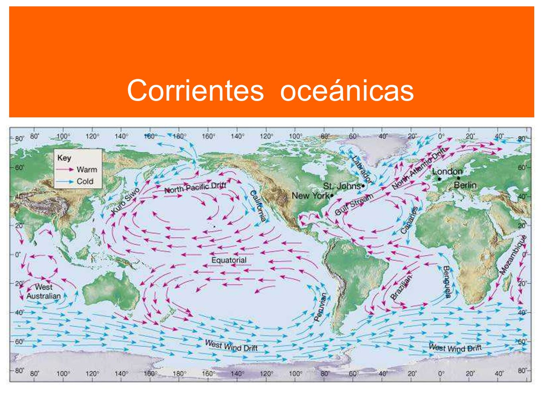 Corrientes oceánicas Corrientes oceánicas 35