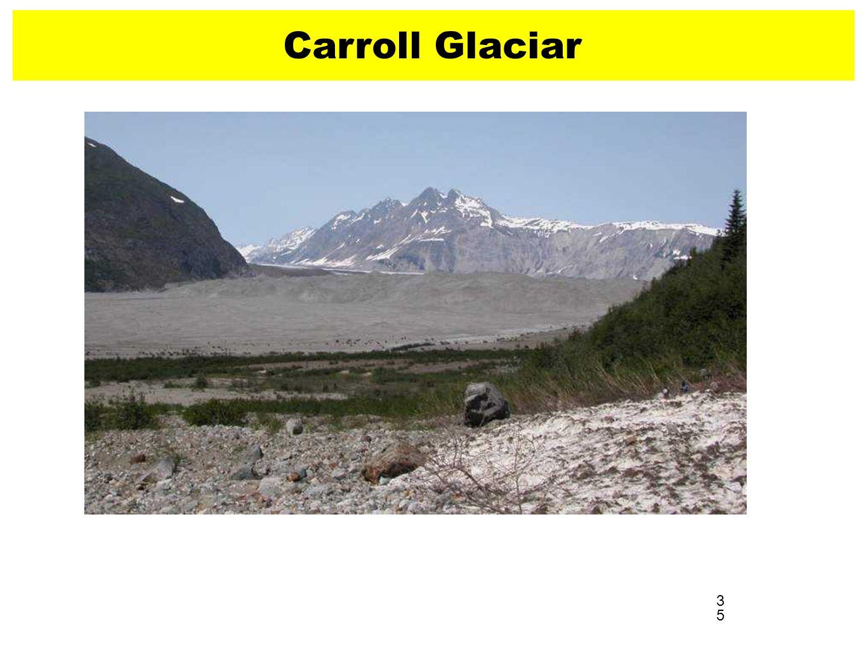 Carroll Glaciar 2004 35 3535