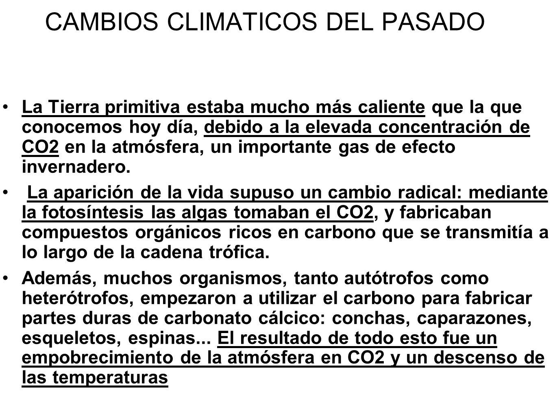 CAMBIOS CLIMATICOS DEL PASADO