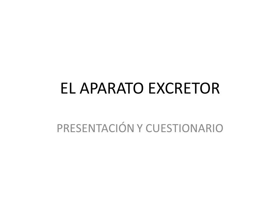 PRESENTACIÓN Y CUESTIONARIO