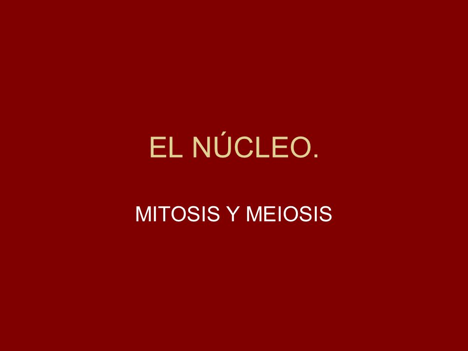 EL NÚCLEO. MITOSIS Y MEIOSIS
