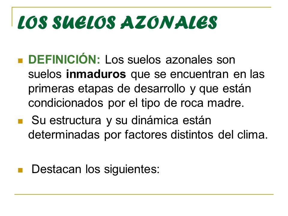 LOS SUELOS AZONALES