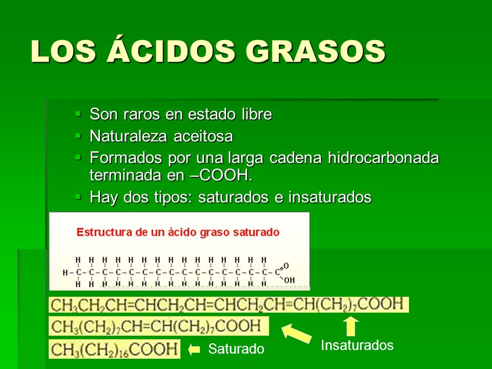 LOS ÁCIDOS GRASOS Son raros en estado libre Naturaleza aceitosa