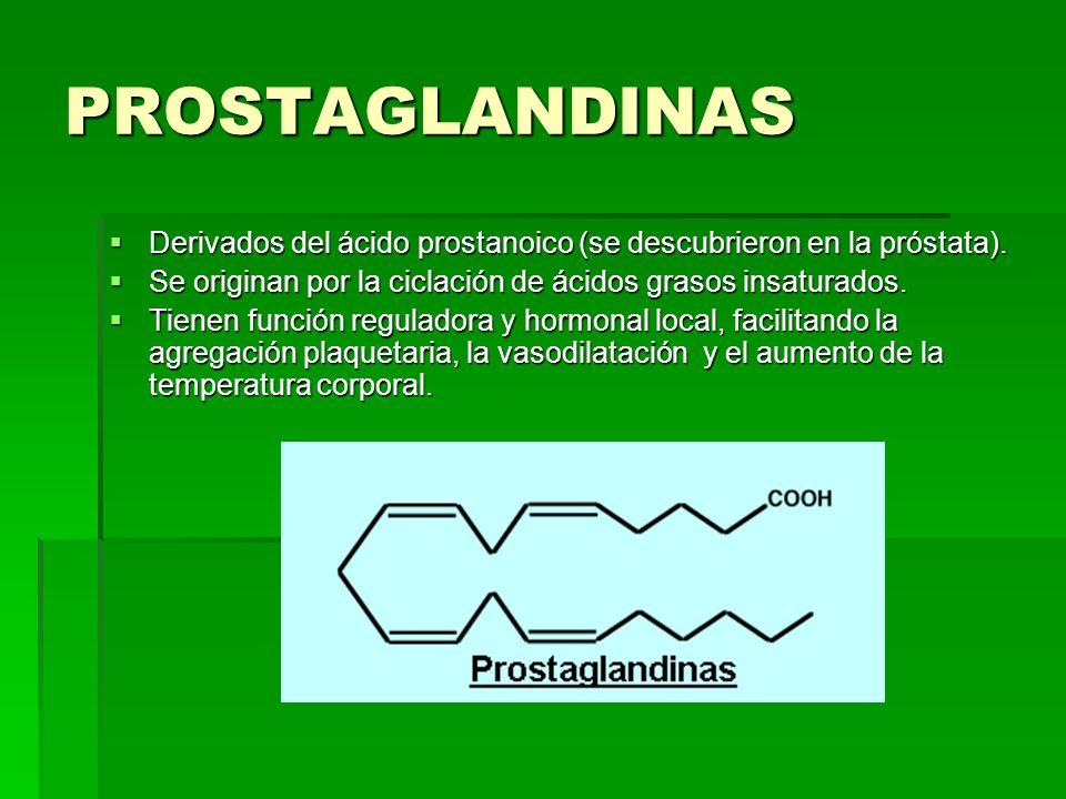PROSTAGLANDINAS Derivados del ácido prostanoico (se descubrieron en la próstata). Se originan por la ciclación de ácidos grasos insaturados.