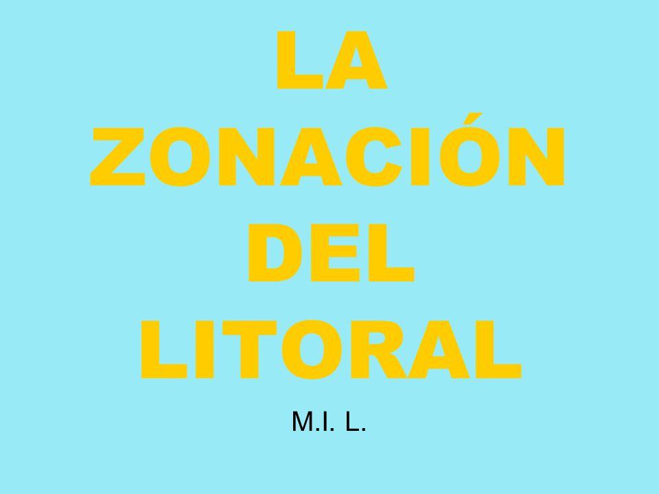 LA ZONACIÓN DEL LITORAL