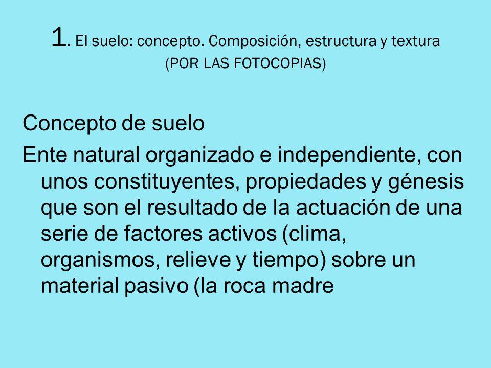 1. El suelo: concepto. Composición, estructura y textura (POR LAS FOTOCOPIAS)