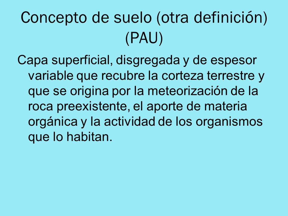 Concepto de suelo (otra definición) (PAU)