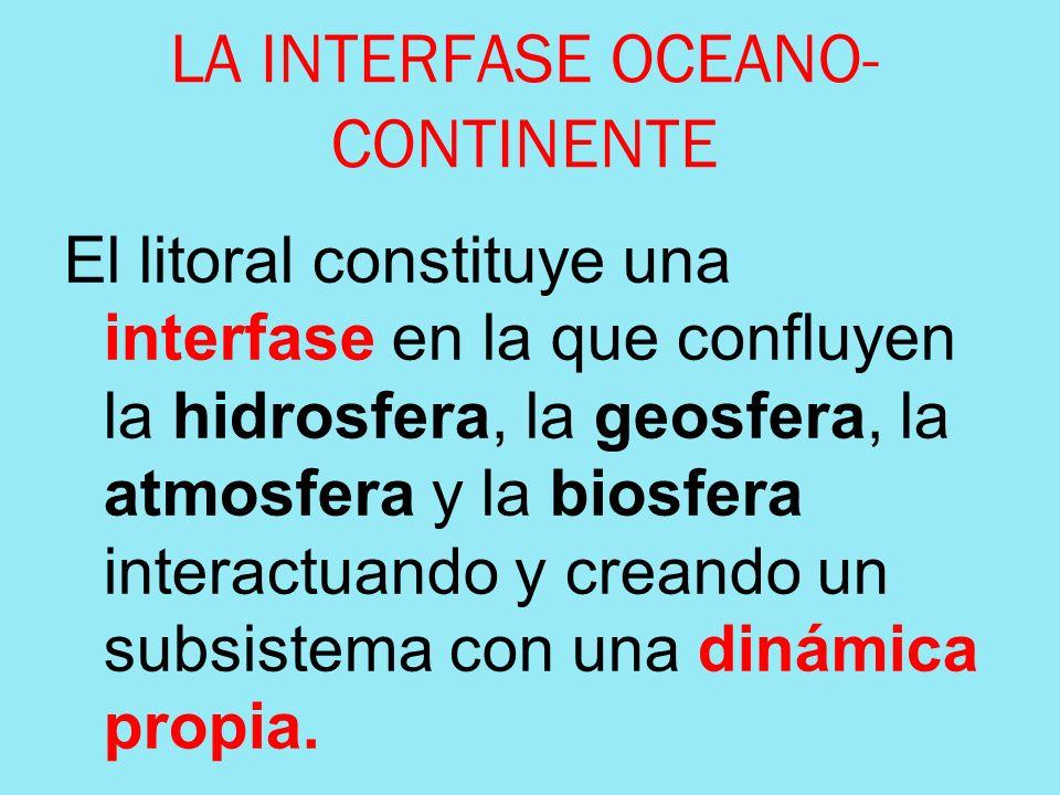 LA INTERFASE OCEANO-CONTINENTE