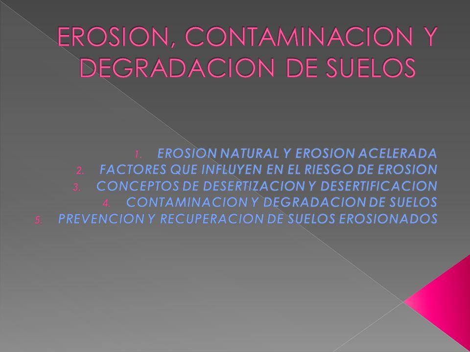 EROSION, CONTAMINACION Y DEGRADACION DE SUELOS