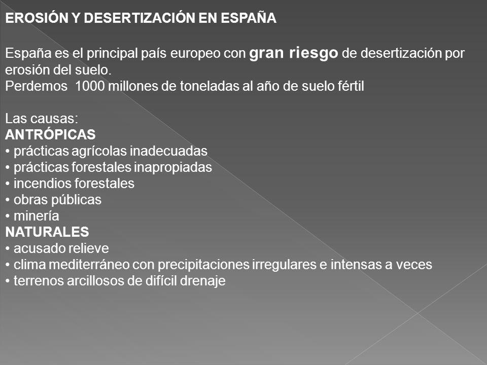 EROSIÓN Y DESERTIZACIÓN EN ESPAÑA