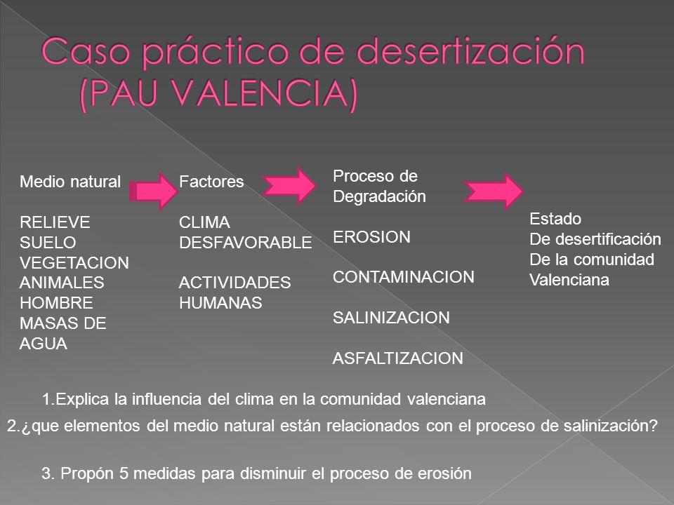 Caso práctico de desertización (PAU VALENCIA)
