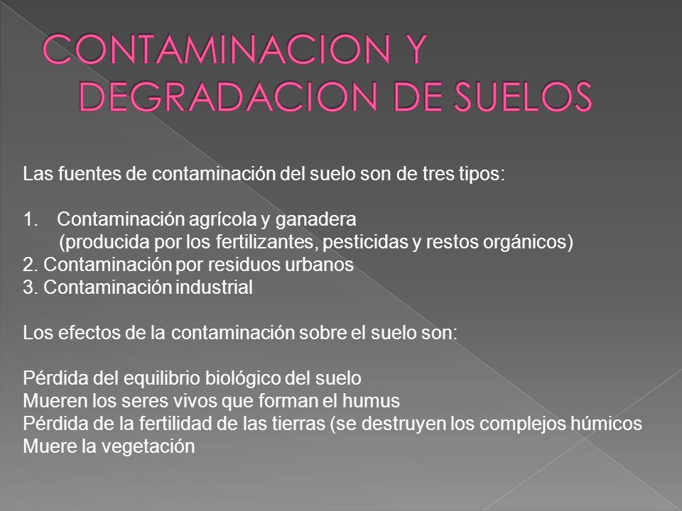 CONTAMINACION Y DEGRADACION DE SUELOS