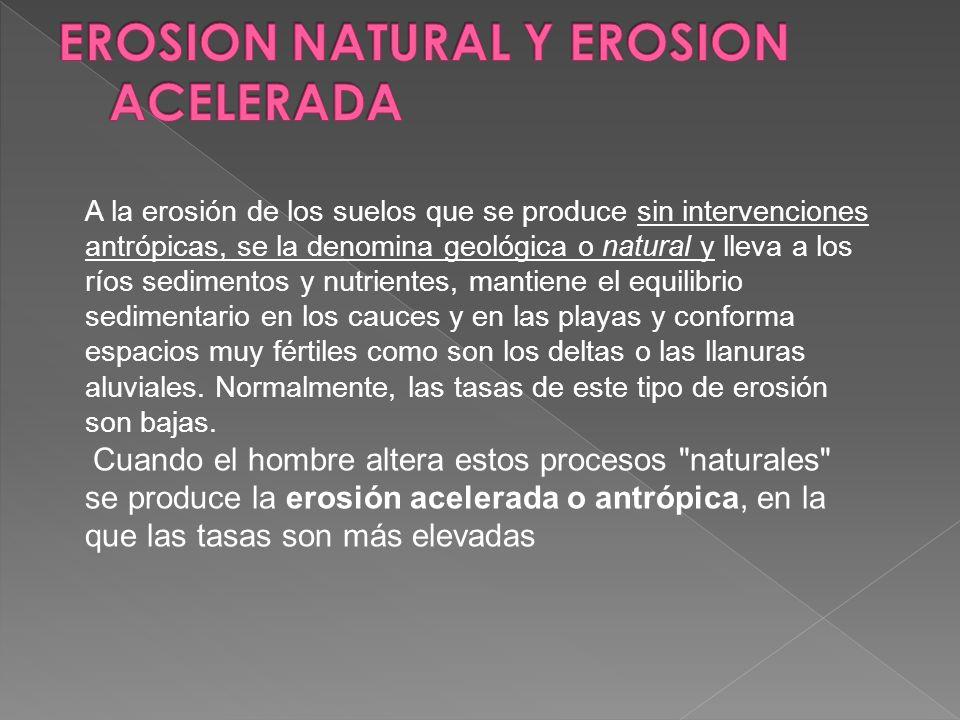 EROSION NATURAL Y EROSION ACELERADA