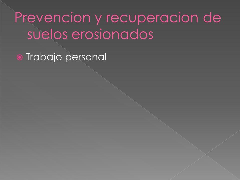 Prevencion y recuperacion de suelos erosionados