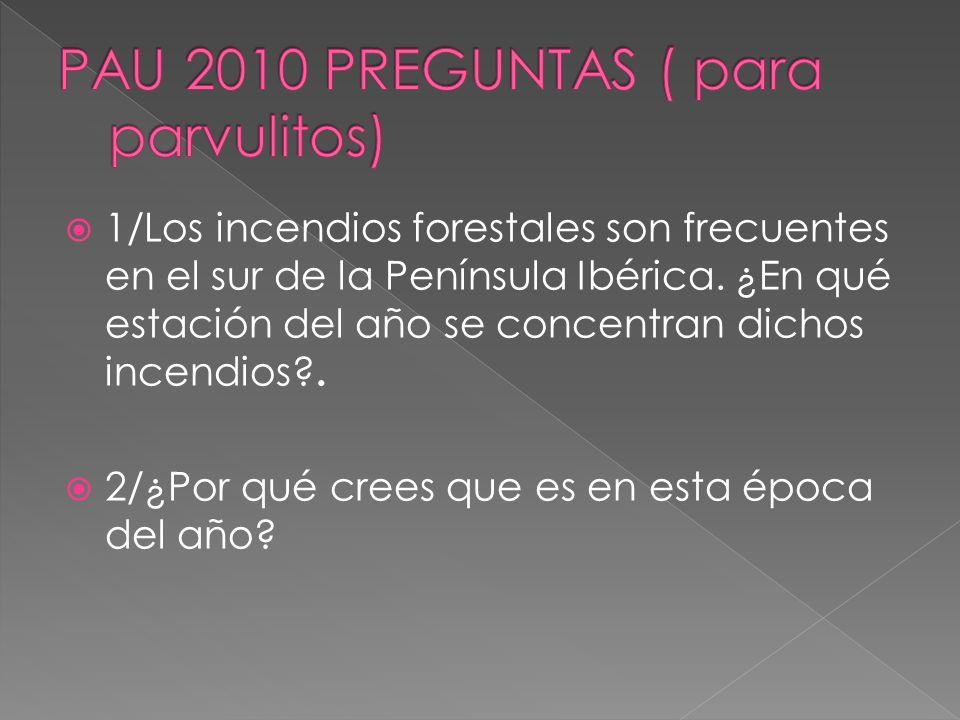 PAU 2010 PREGUNTAS ( para parvulitos)