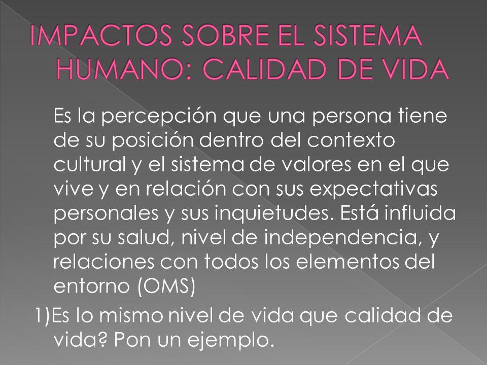IMPACTOS SOBRE EL SISTEMA HUMANO: CALIDAD DE VIDA