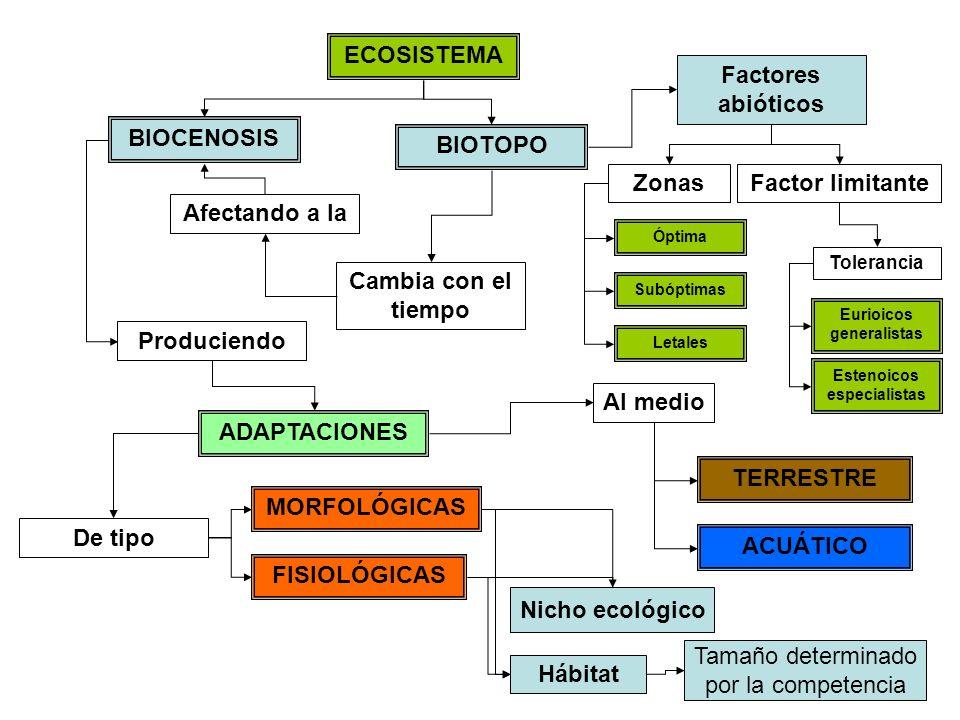 ECOSISTEMA Factores abióticos BIOCENOSIS BIOTOPO Zonas