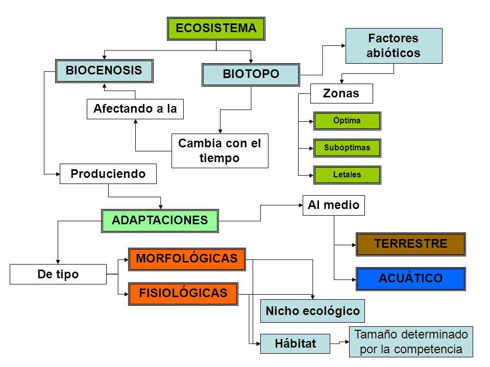 ECOSISTEMA Factores abióticos BIOCENOSIS BIOTOPO Zonas Afectando a la