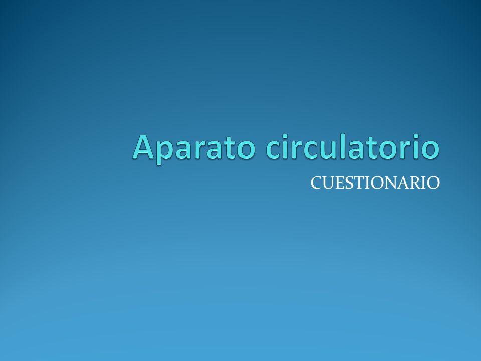 Aparato circulatorio CUESTIONARIO
