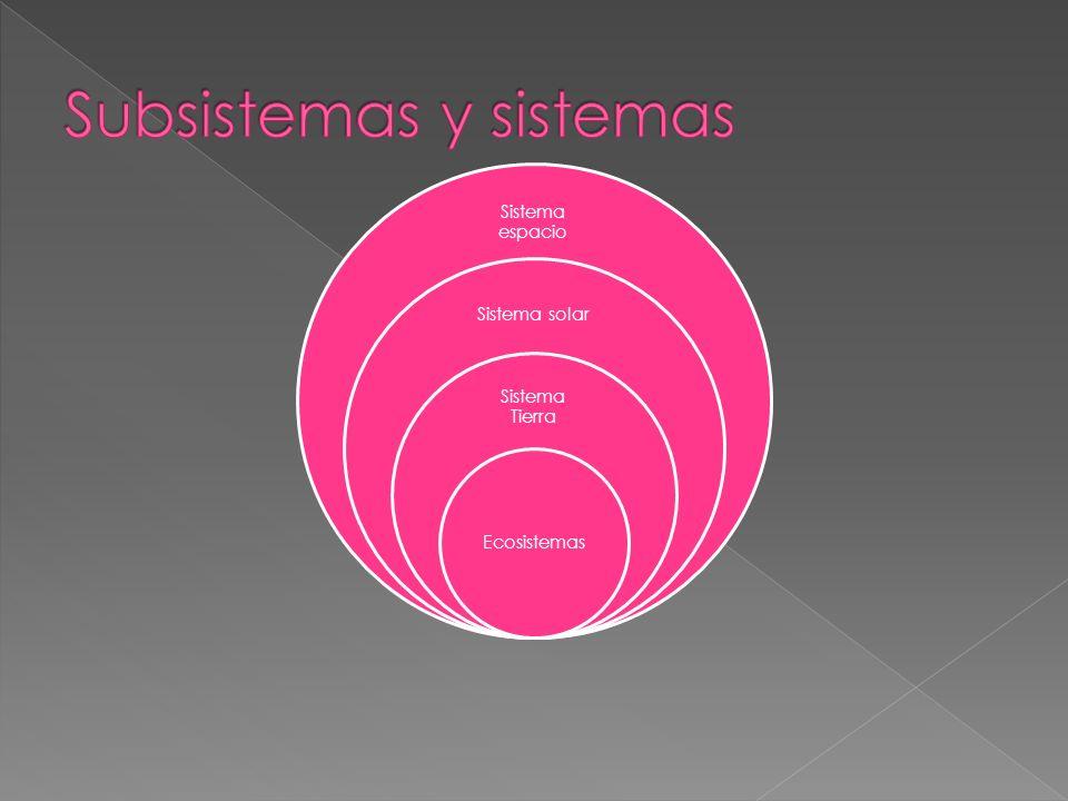 Subsistemas y sistemas