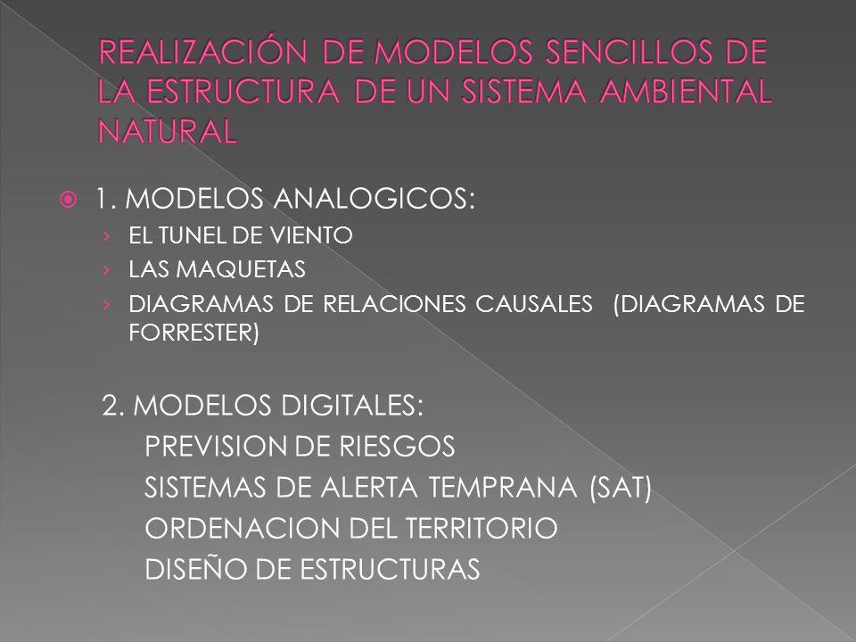 REALIZACIÓN DE MODELOS SENCILLOS DE LA ESTRUCTURA DE UN SISTEMA AMBIENTAL NATURAL
