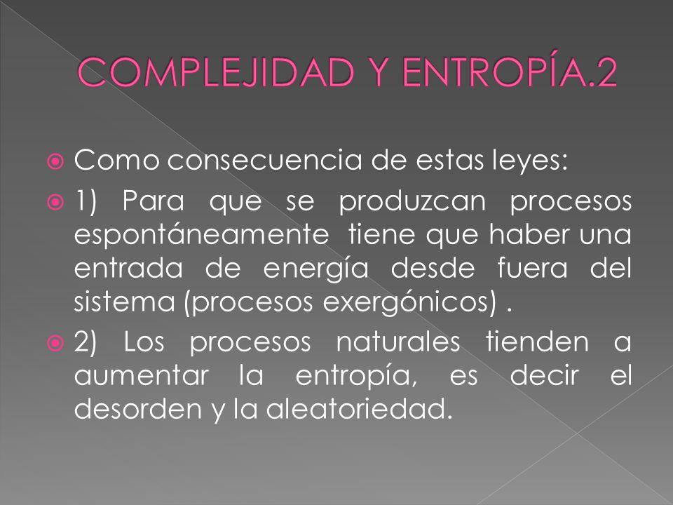 COMPLEJIDAD Y ENTROPÍA.2