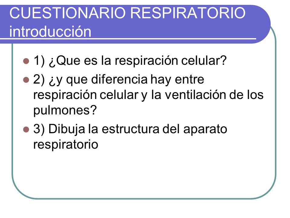 Cuestionario Respiratorio Introducción Ppt Video Online