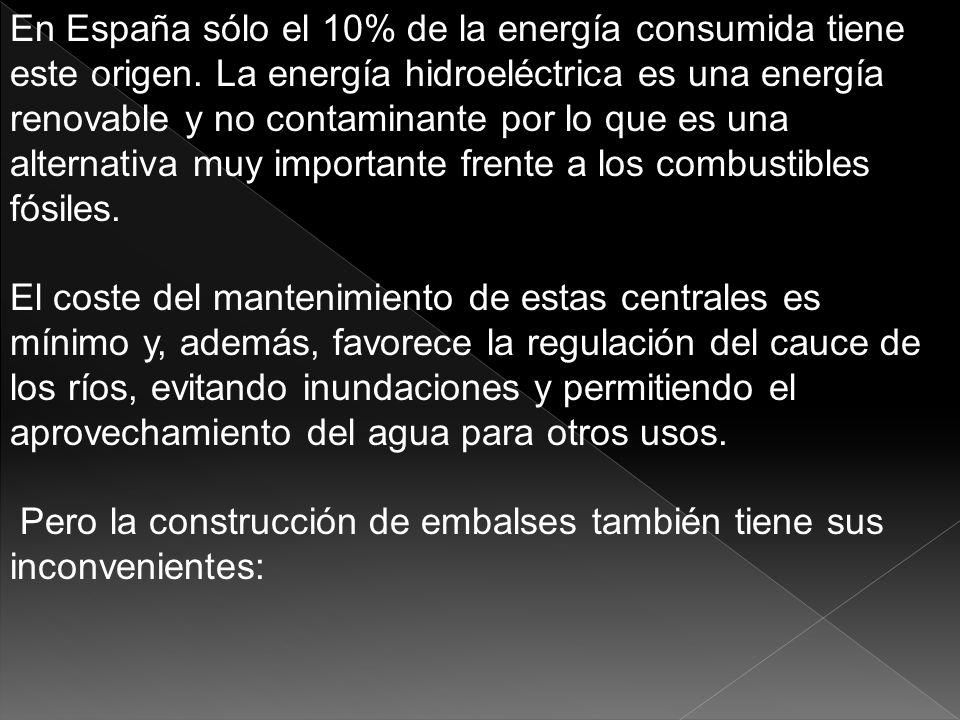 En España sólo el 10% de la energía consumida tiene este origen