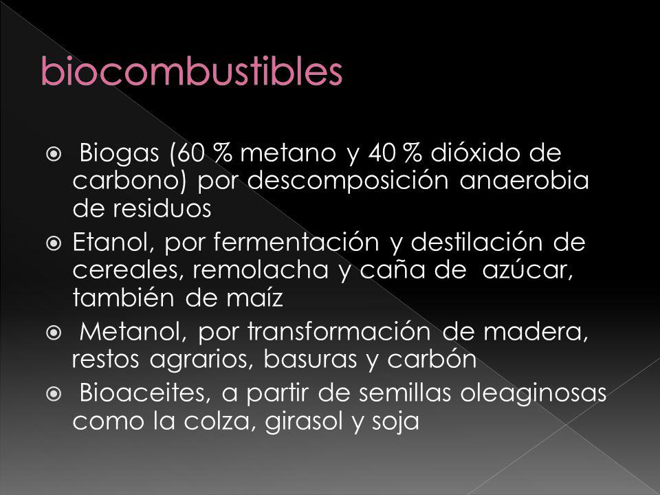 biocombustibles Biogas (60 % metano y 40 % dióxido de carbono) por descomposición anaerobia de residuos.