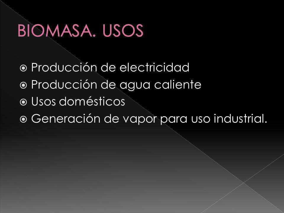 BIOMASA. USOS Producción de electricidad Producción de agua caliente