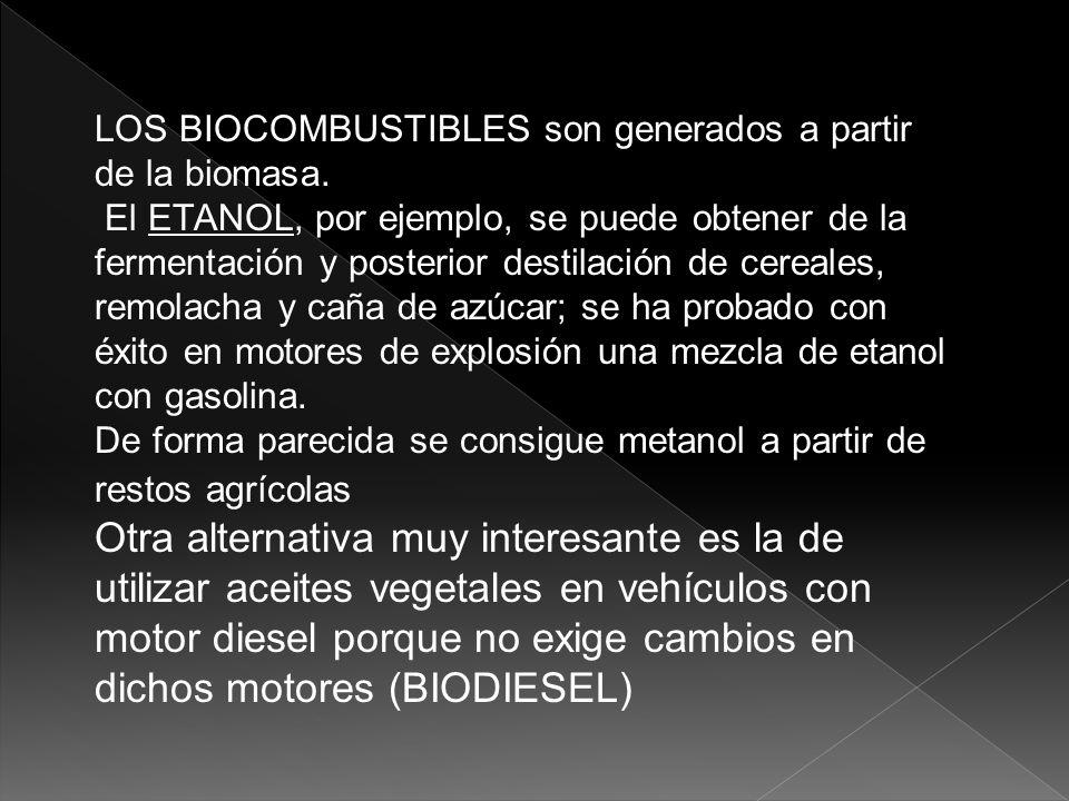 los biocombustibles son generados a partir de la biomasa.