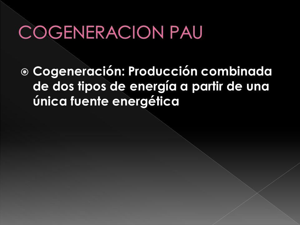 COGENERACION PAU Cogeneración: Producción combinada de dos tipos de energía a partir de una única fuente energética.