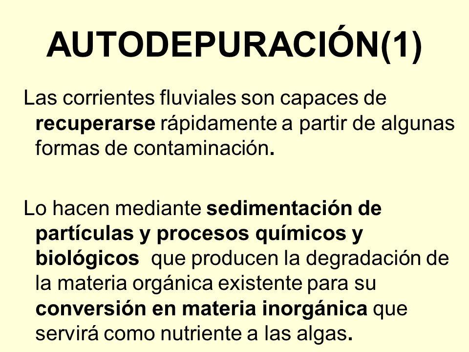 Autodepuración(1)