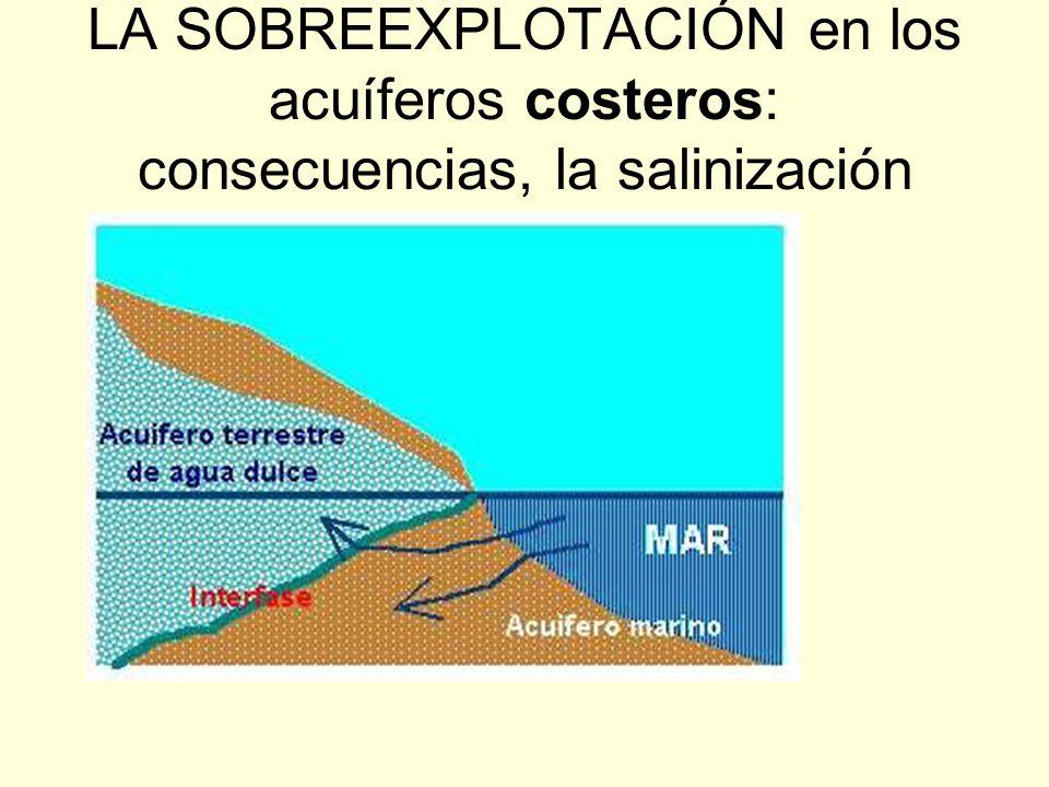 LA SOBREEXPLOTACIÓN en los acuíferos costeros: consecuencias, la salinización