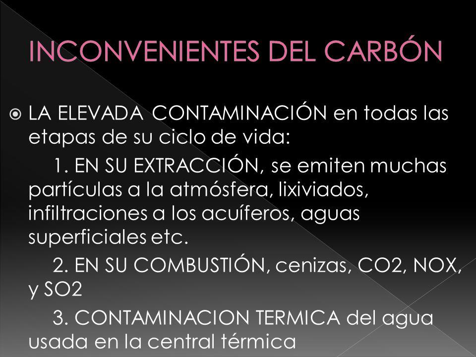 INCONVENIENTES DEL CARBÓN
