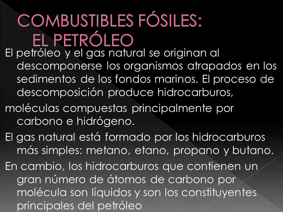 COMBUSTIBLES FÓSILES: EL PETRÓLEO