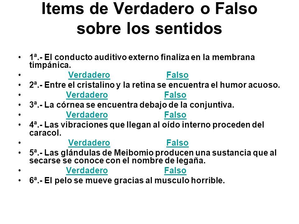 Items de Verdadero o Falso sobre los sentidos