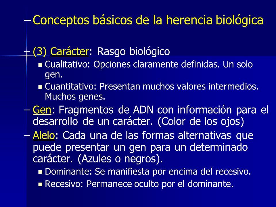 Conceptos básicos de la herencia biológica