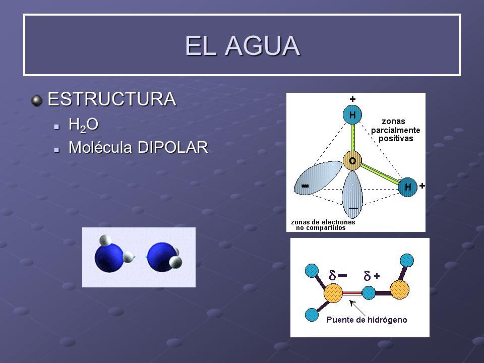 EL AGUA ESTRUCTURA H2O Molécula DIPOLAR