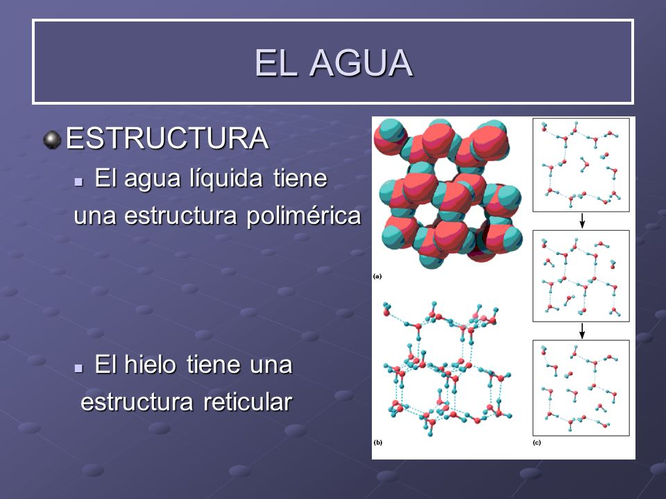 EL AGUA ESTRUCTURA El agua líquida tiene una estructura polimérica