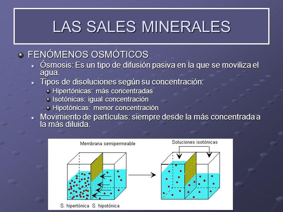 LAS SALES MINERALES FENÓMENOS OSMÓTICOS