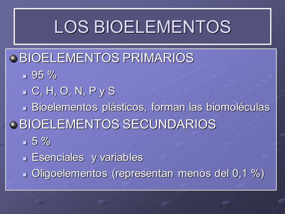 LOS BIOELEMENTOS BIOELEMENTOS PRIMARIOS BIOELEMENTOS SECUNDARIOS 95 %