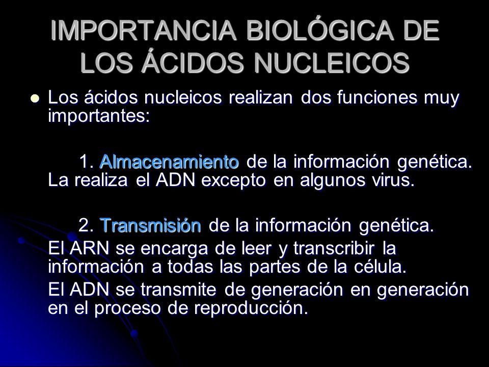 IMPORTANCIA BIOLÓGICA DE LOS ÁCIDOS NUCLEICOS
