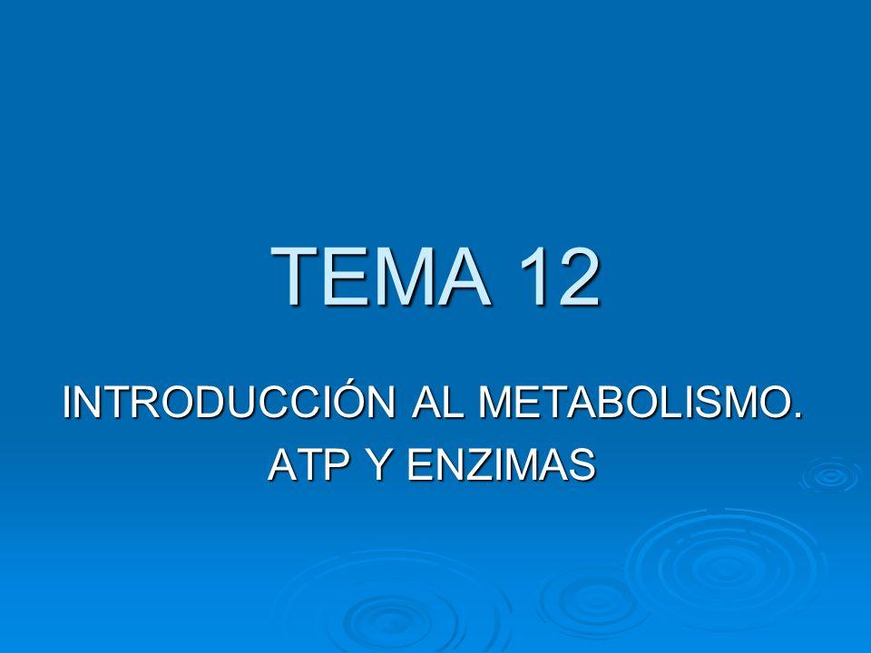 INTRODUCCIÓN AL METABOLISMO. ATP Y ENZIMAS