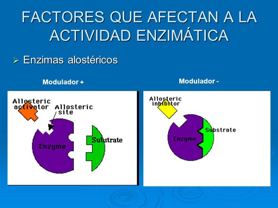 FACTORES QUE AFECTAN A LA ACTIVIDAD ENZIMÁTICA