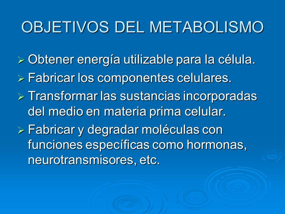OBJETIVOS DEL METABOLISMO