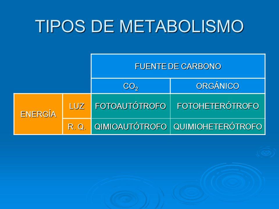 TIPOS DE METABOLISMO FUENTE DE CARBONO CO2 ORGÁNICO ENERGÍA LUZ