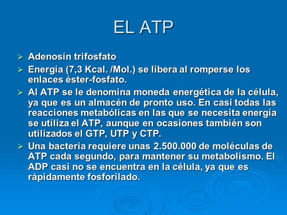 EL ATP Adenosín trifosfato