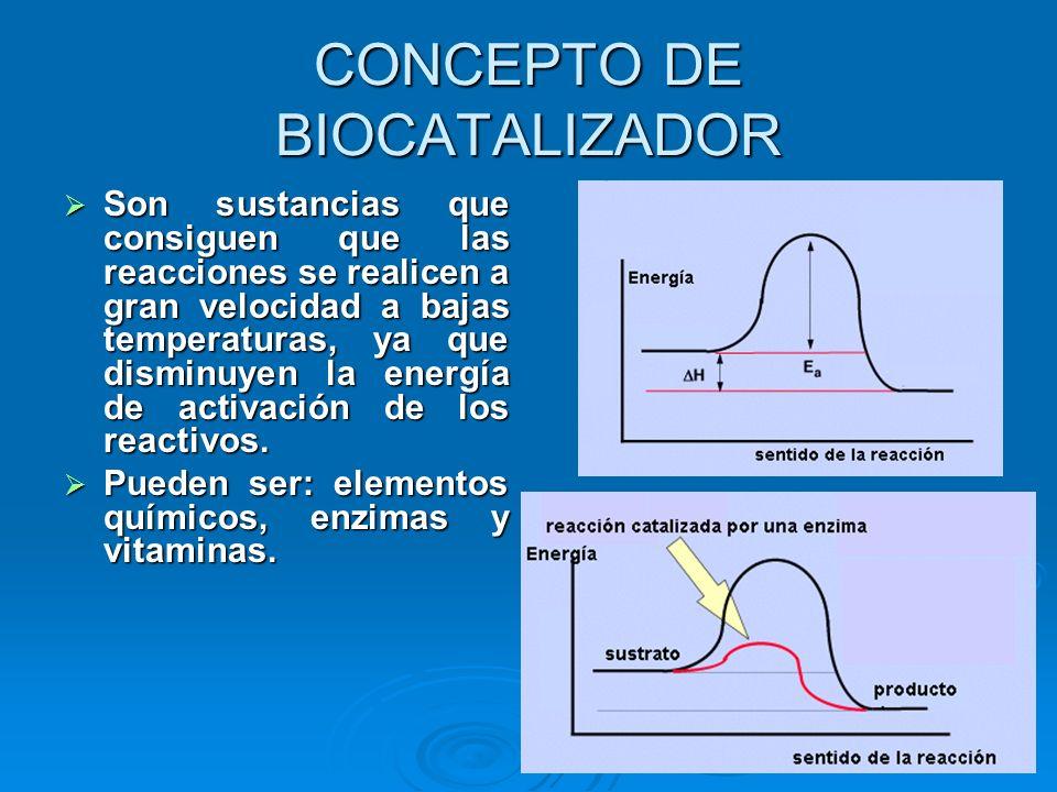 CONCEPTO DE BIOCATALIZADOR