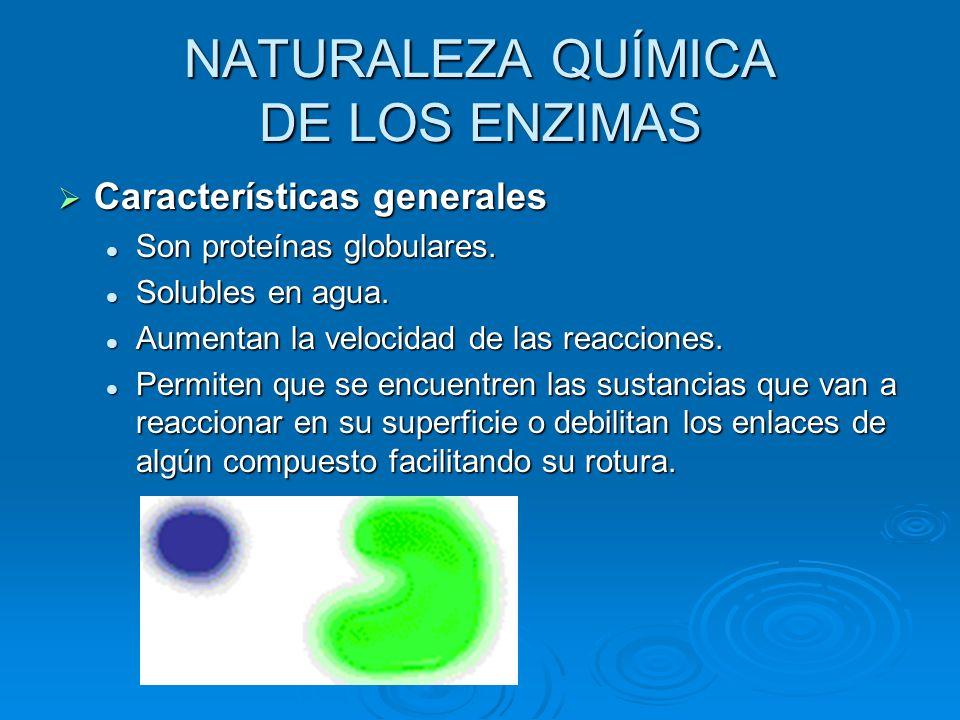 NATURALEZA QUÍMICA DE LOS ENZIMAS